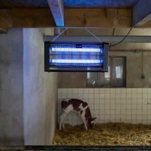 Knock Off Insectenlamp 2x15 Watt 7