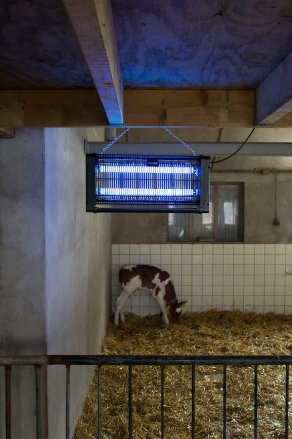 Knock Off Insectenlamp 2x15 Watt 2