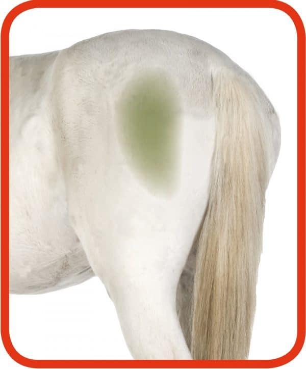 Hi Gloss Clean Spray voor Paarden 500 ml 1