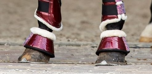 springschoenen bordeaux rood